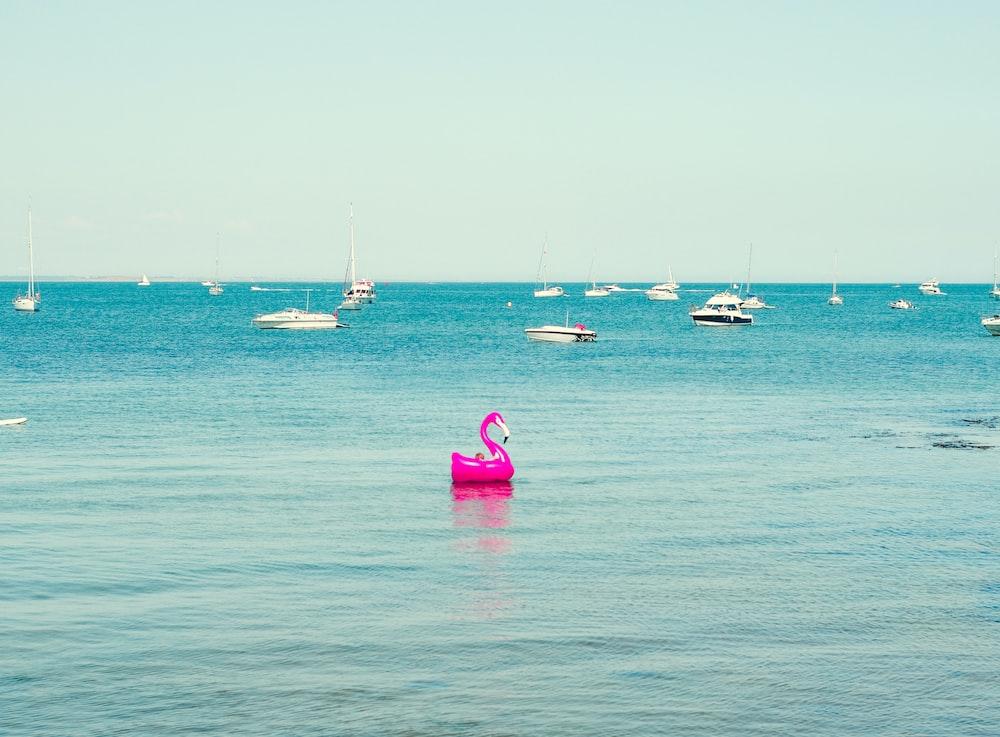 pink flamingo floats