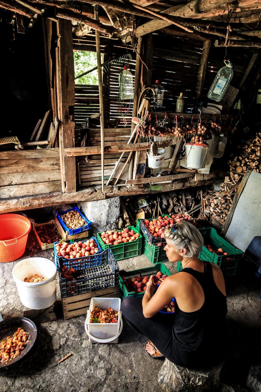 woman sitting on stool arranging fruits
