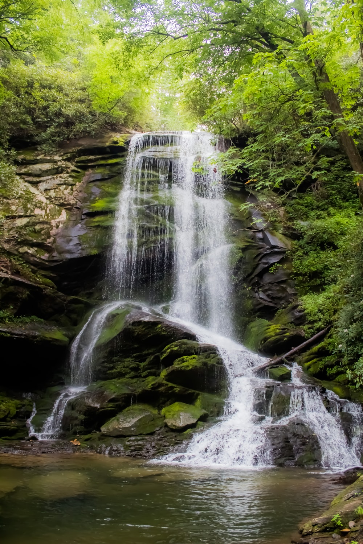 waterfalls between green trees