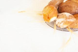 Gluten Allergy Rash Interventional Cardiology Palliative Care.