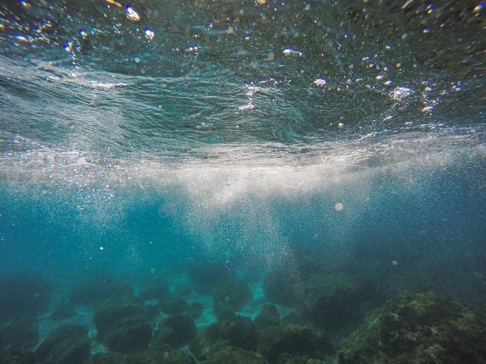 underwater shot during daytime