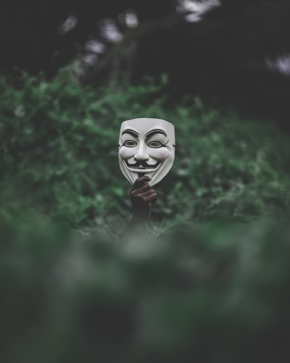 shallow focus photography of vendetta mask