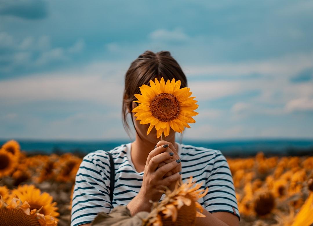 Girlfriends, in sunflowers field, summer shooting in Burgundy, France.