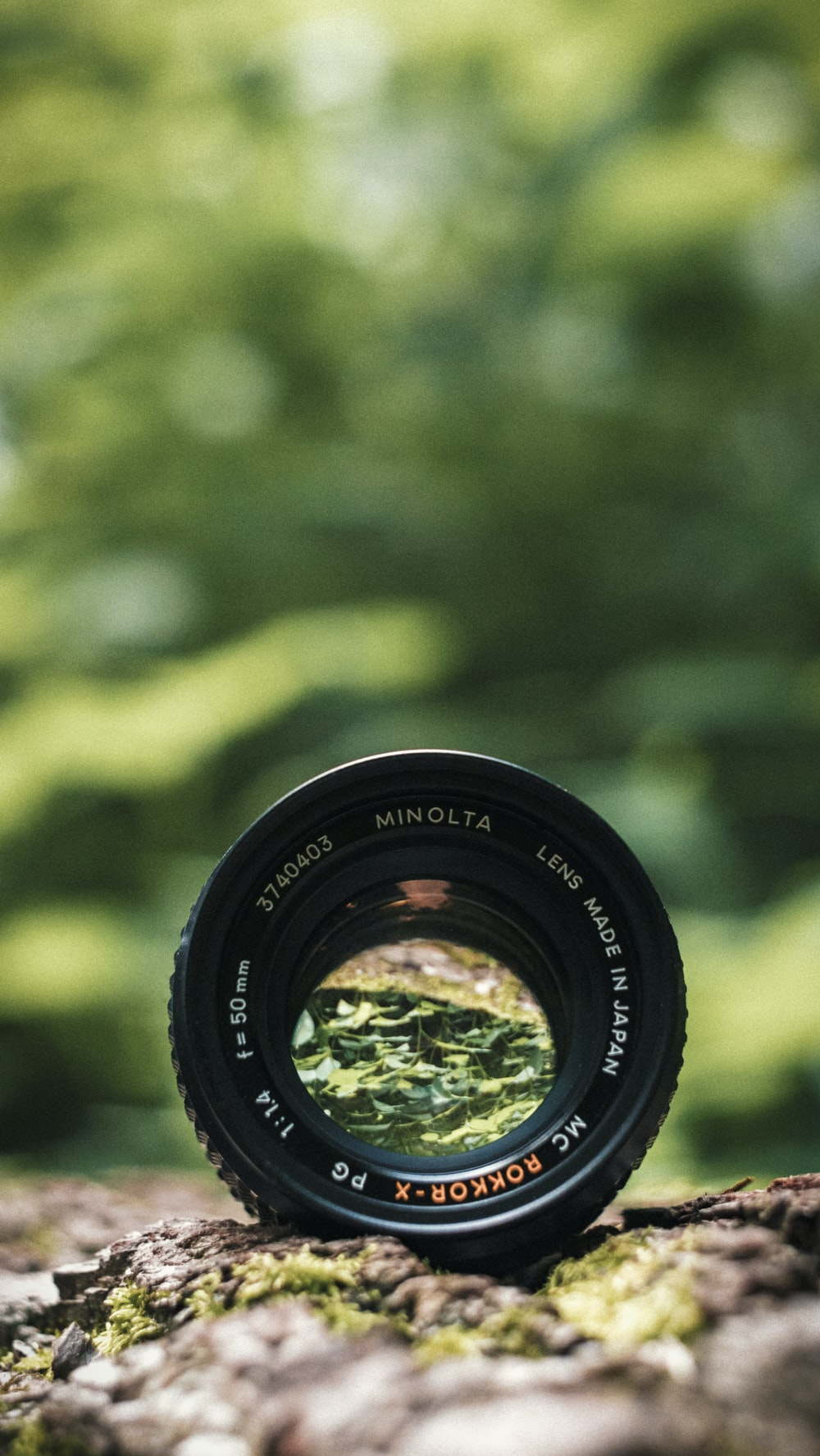 black Minolta lens in selective focus photography