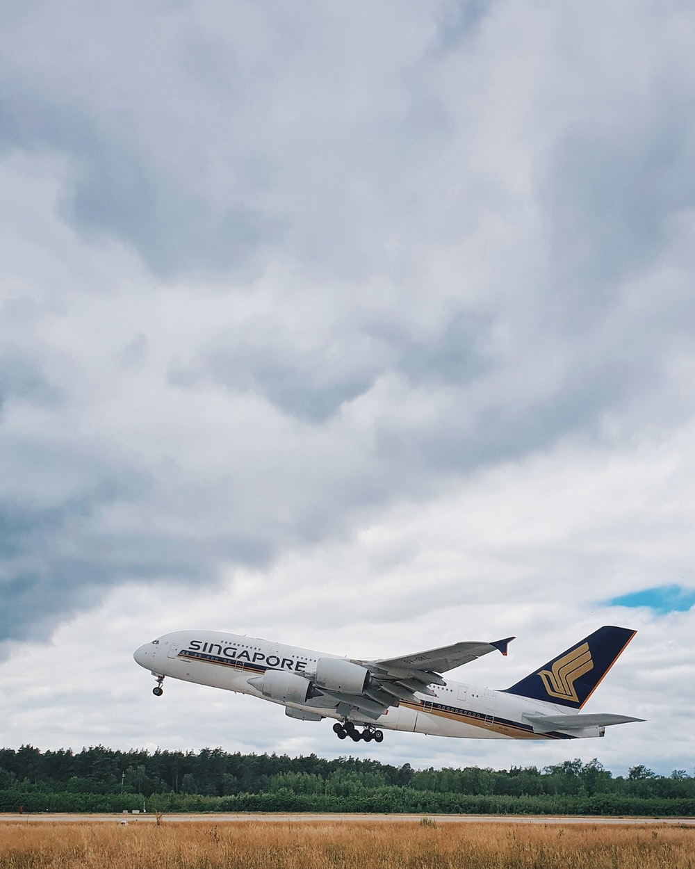 white Singapore airplane under nimbus clouds