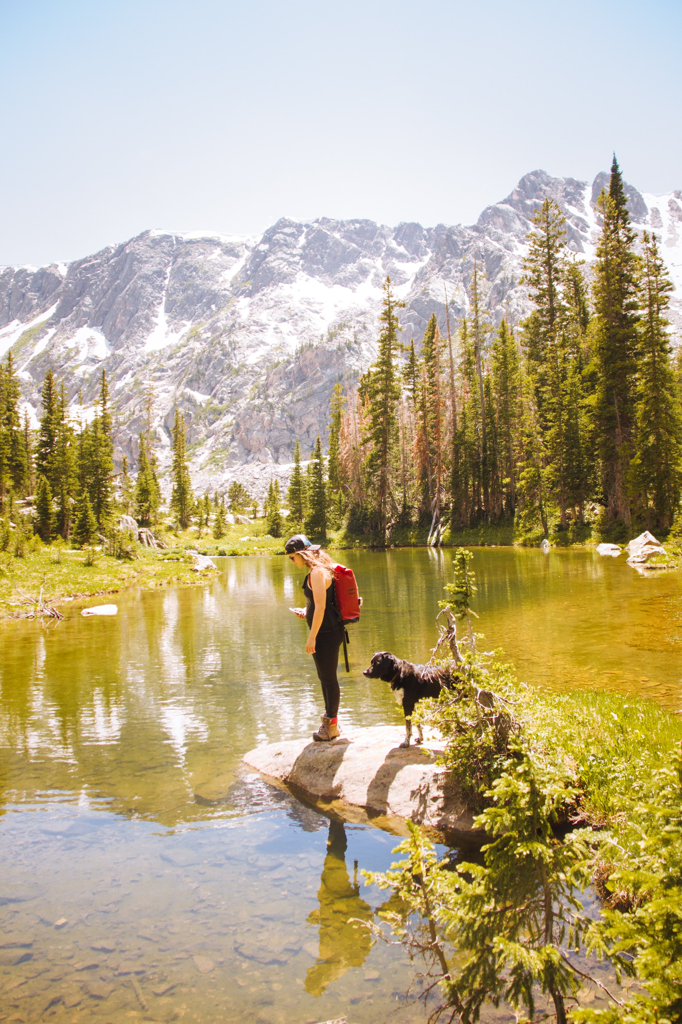 woman standing on rock beside dog in front of body of water
