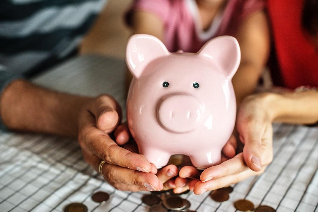 Undergraduate loan options