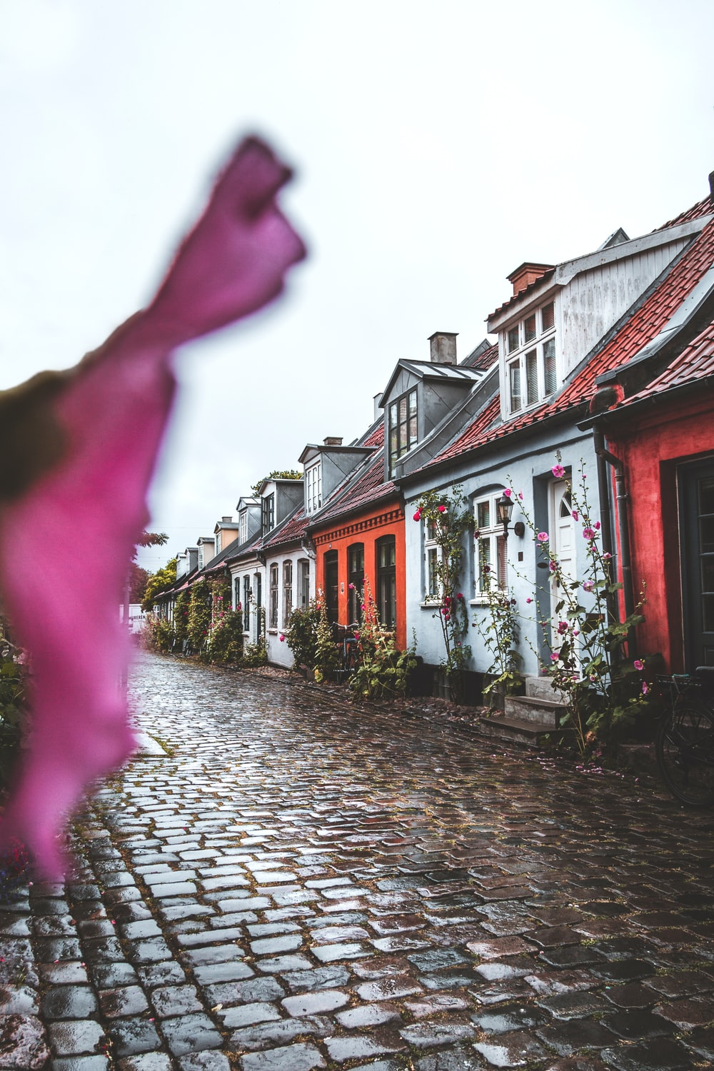 landscape photography of assorted-color paint houses