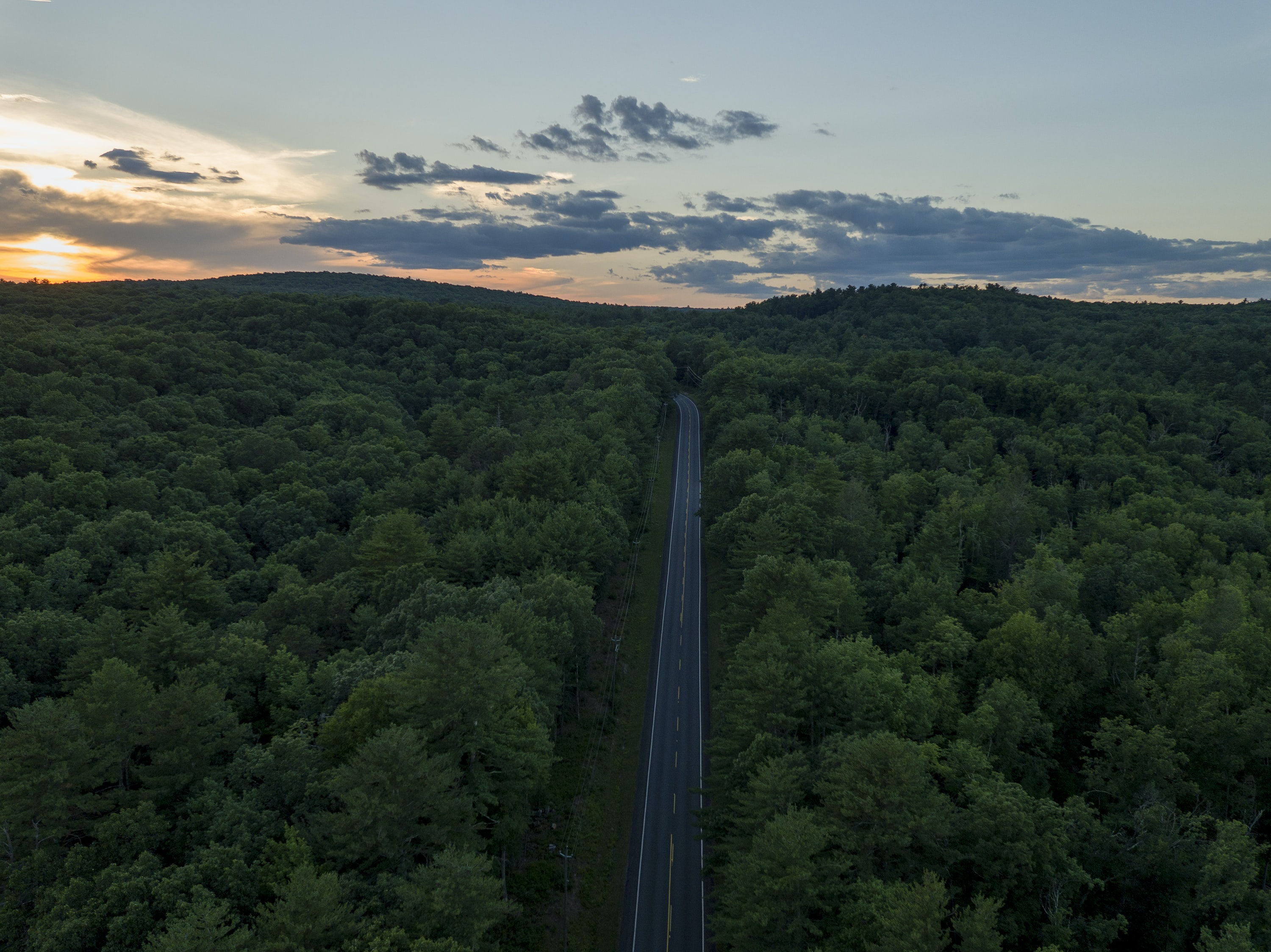 aerial photography of road between trees during golden hour
