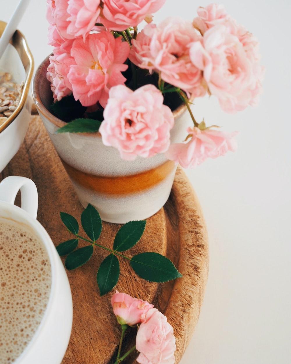 vase of pink petaled flowers