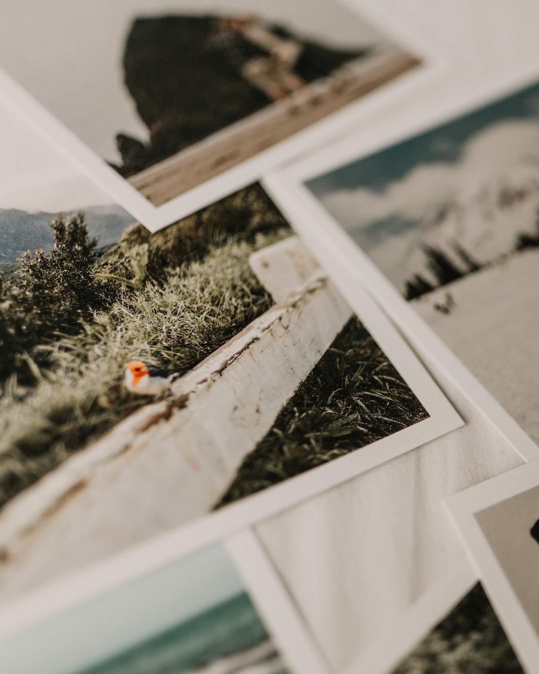 Snapshots of My Travels