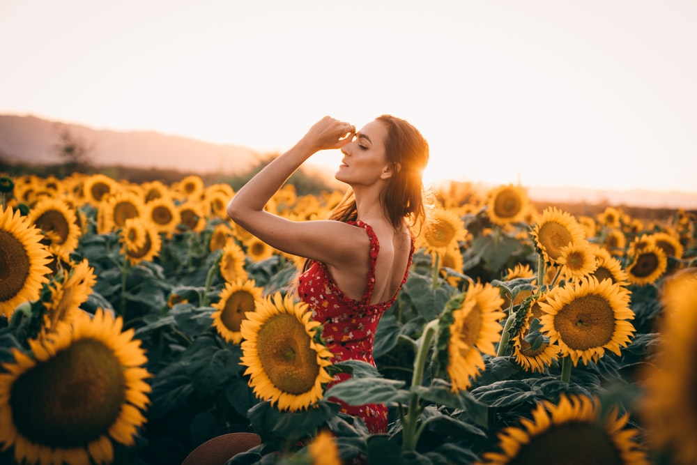 woman standing surrounding by sunflowers