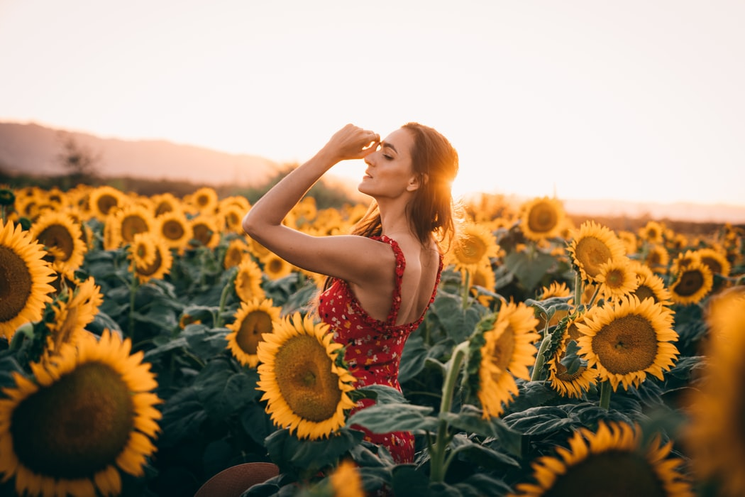 woman in a red dress among sunflowers