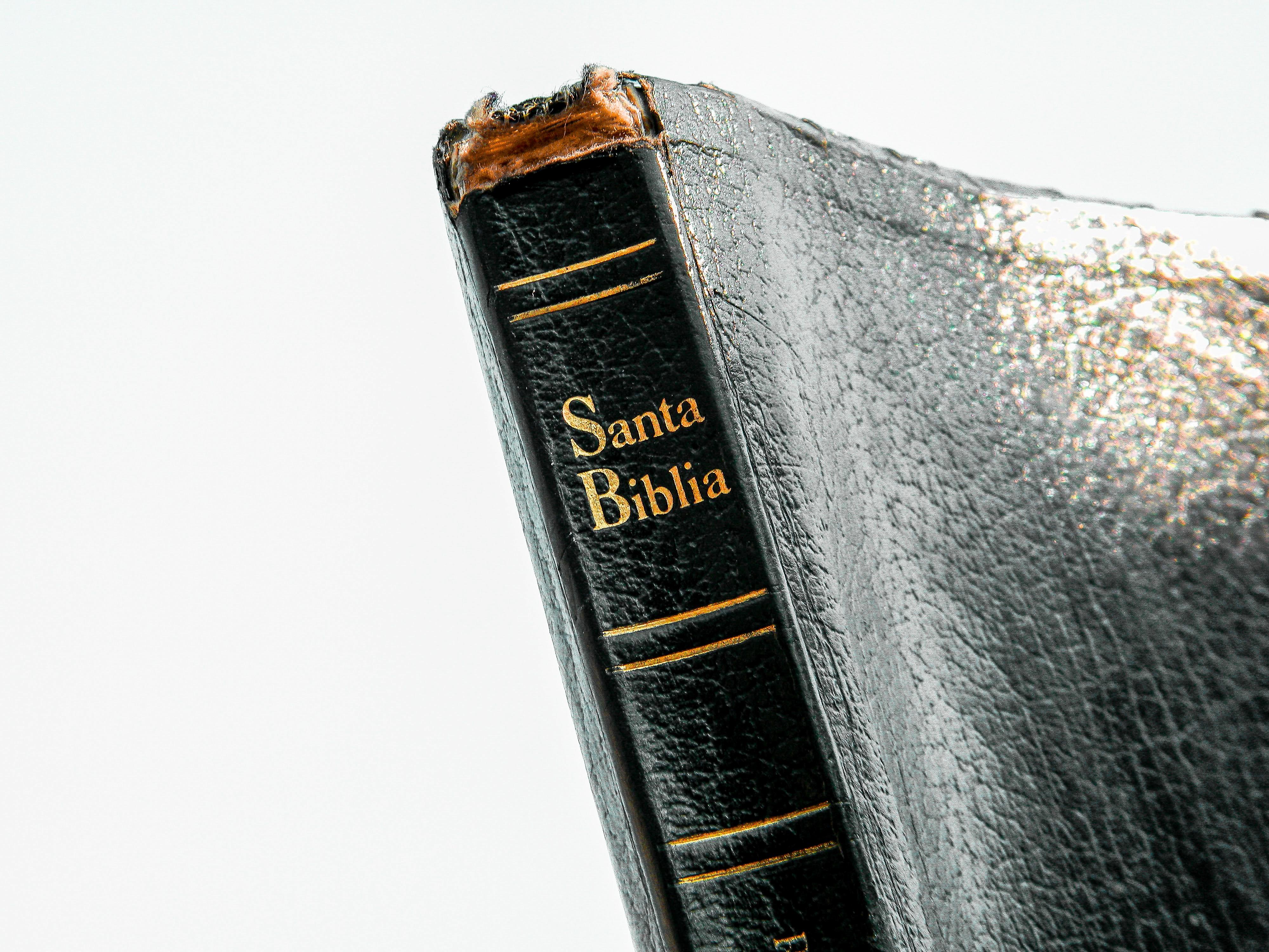 Santa Biblia book