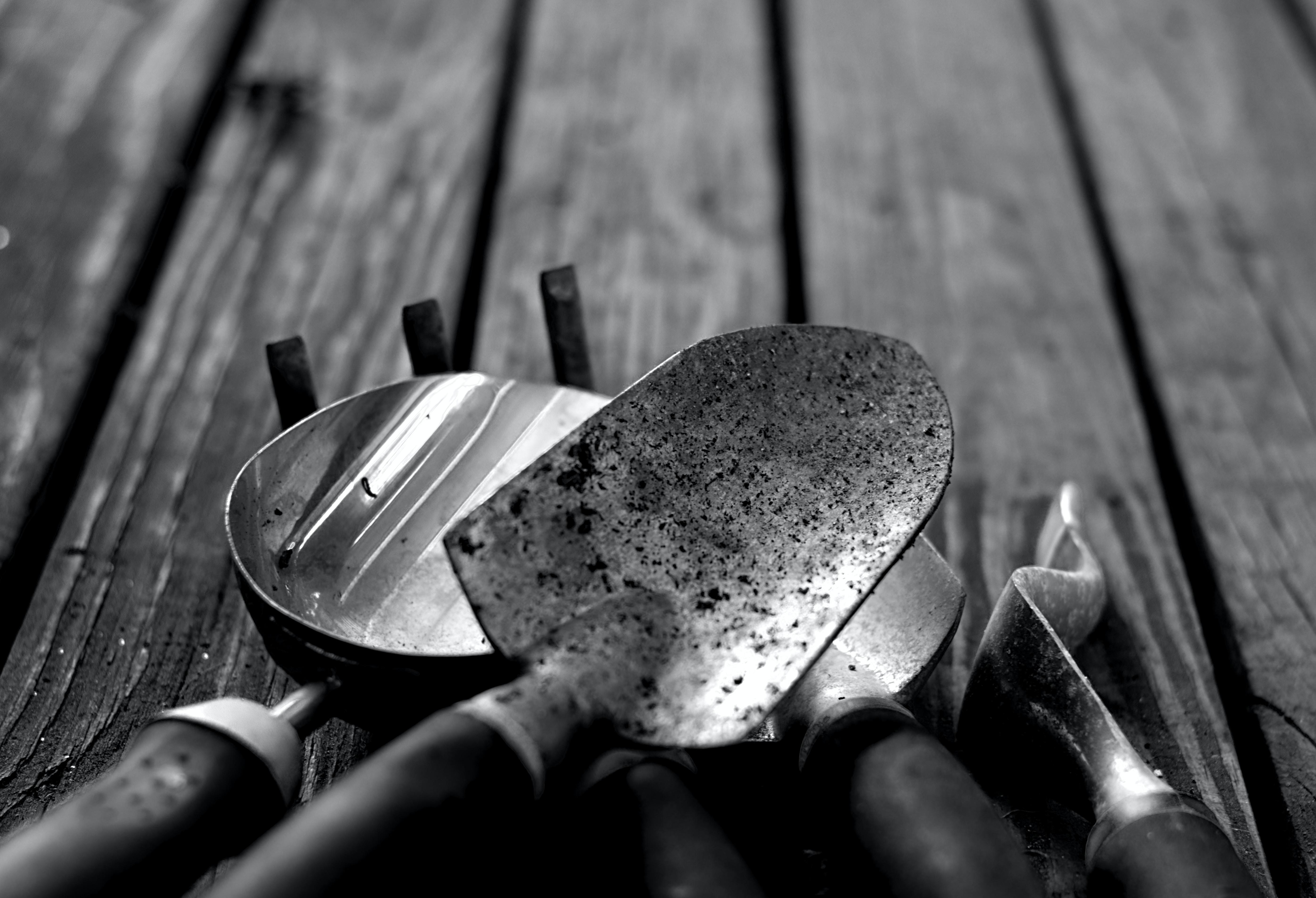 greyscale photo of gardening tools