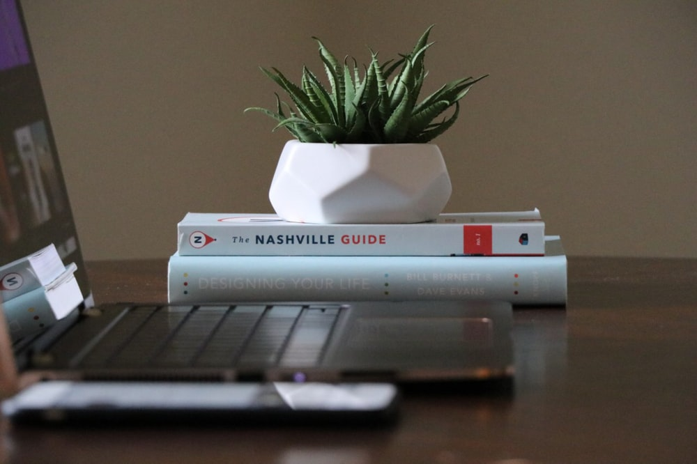 selective focus photography of plant placed on two books