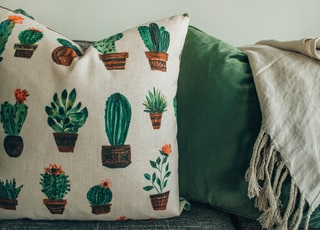 cactus-printed throw pillows on chair