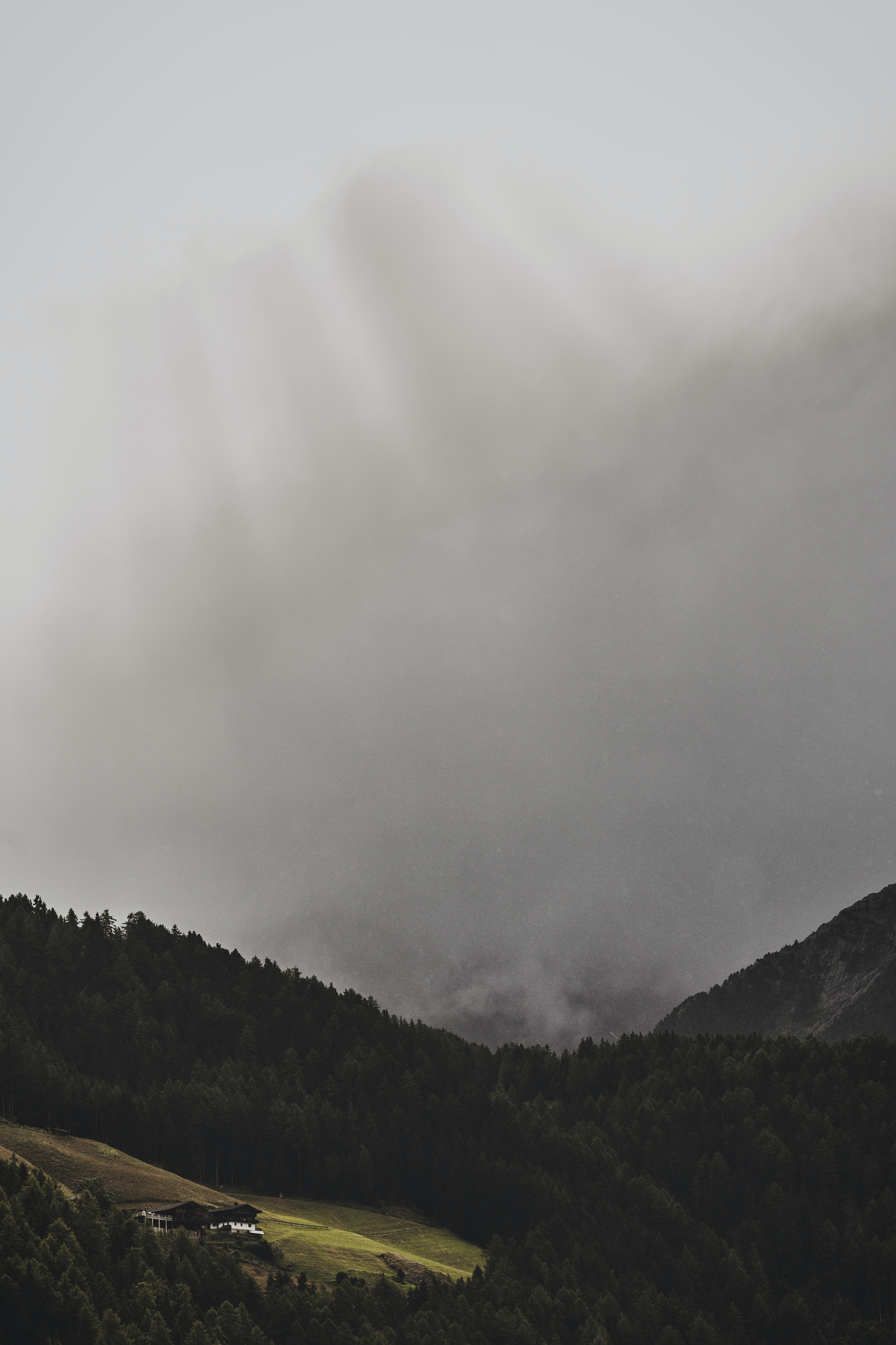 bird's eye view of forest mountain with fog