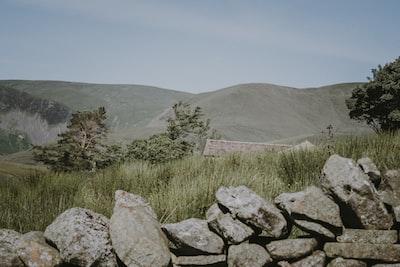 Countryside Scene