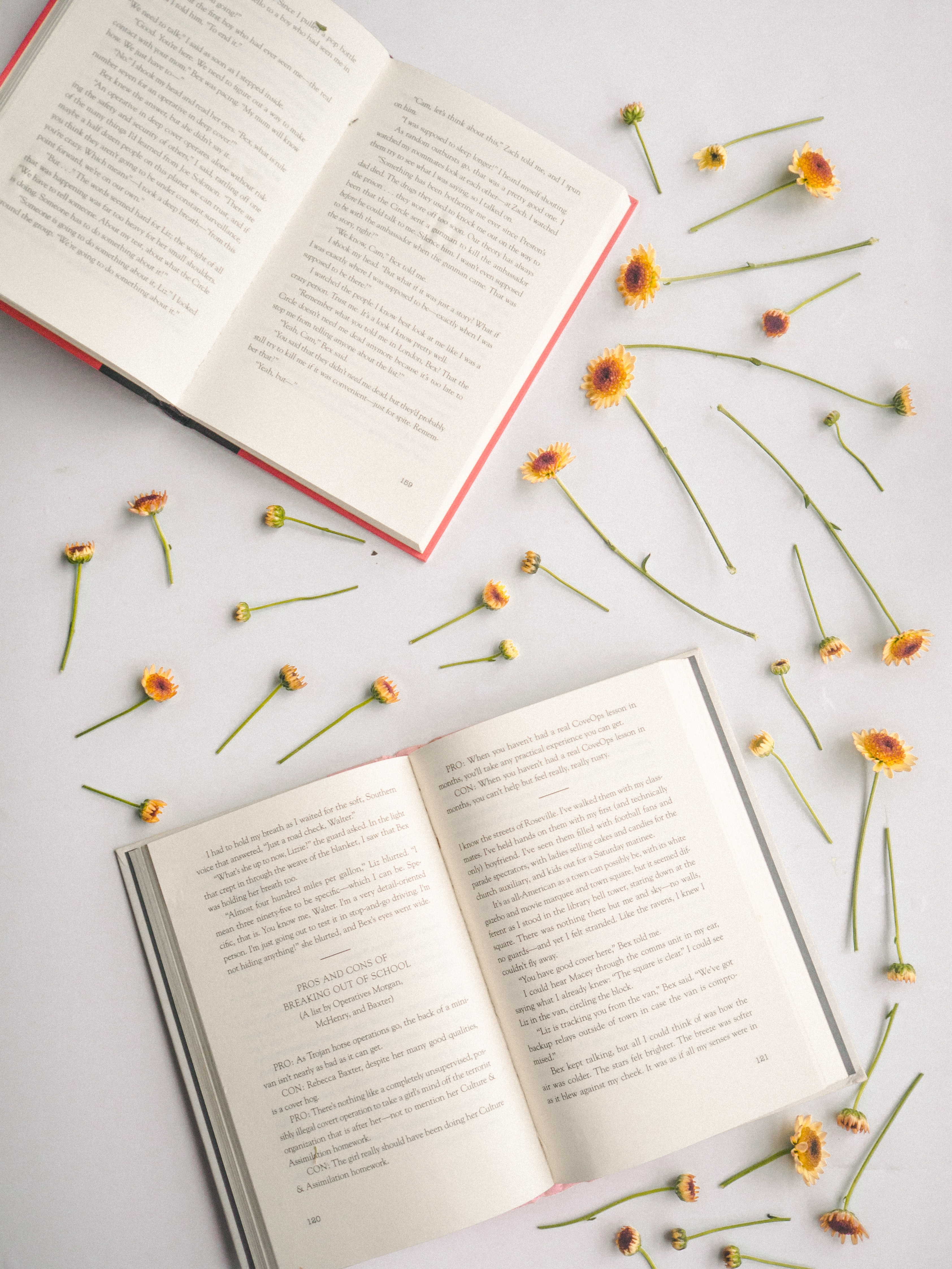 two books surrounded sunflowers