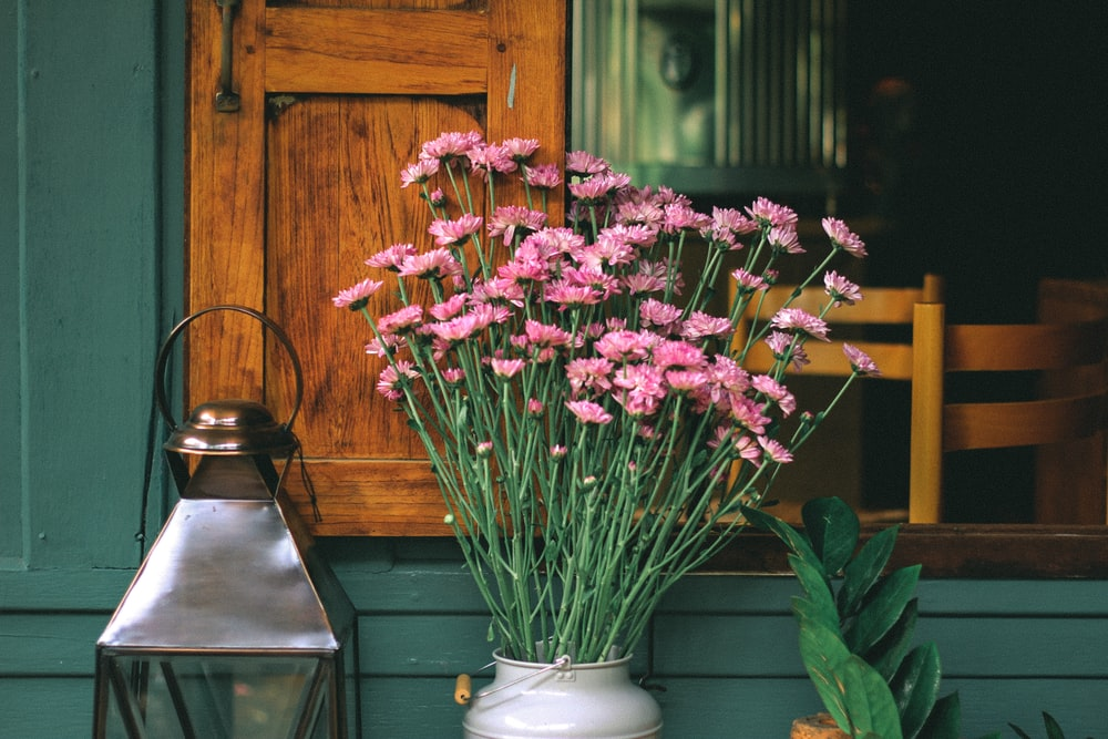 pink gerbera daisies on milk churn