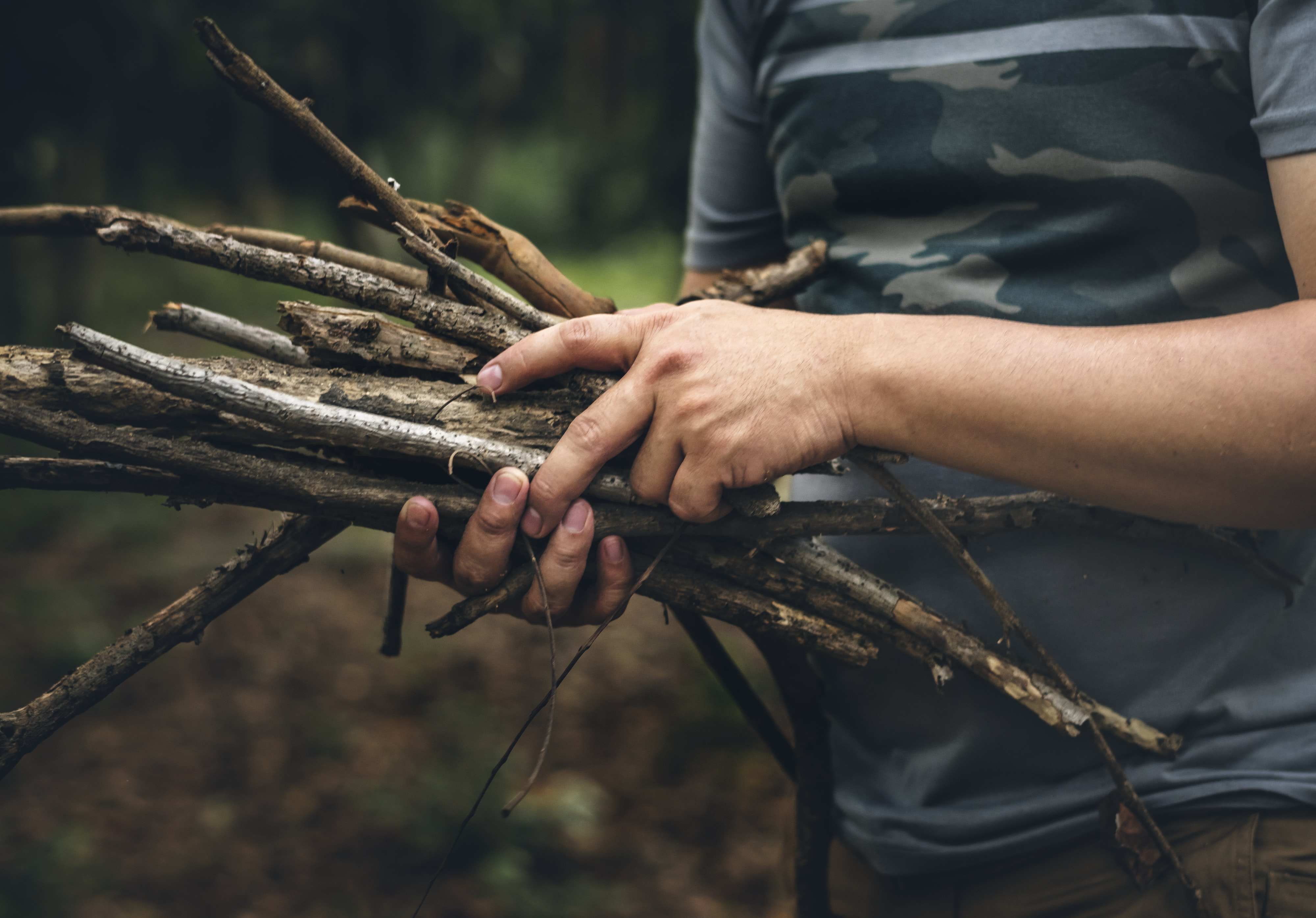person holding firewood