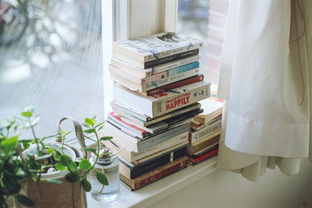assorted-title book lot beside window
