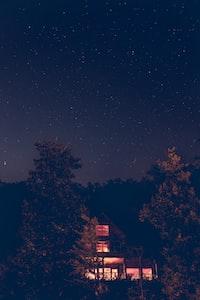 brown house beside trees