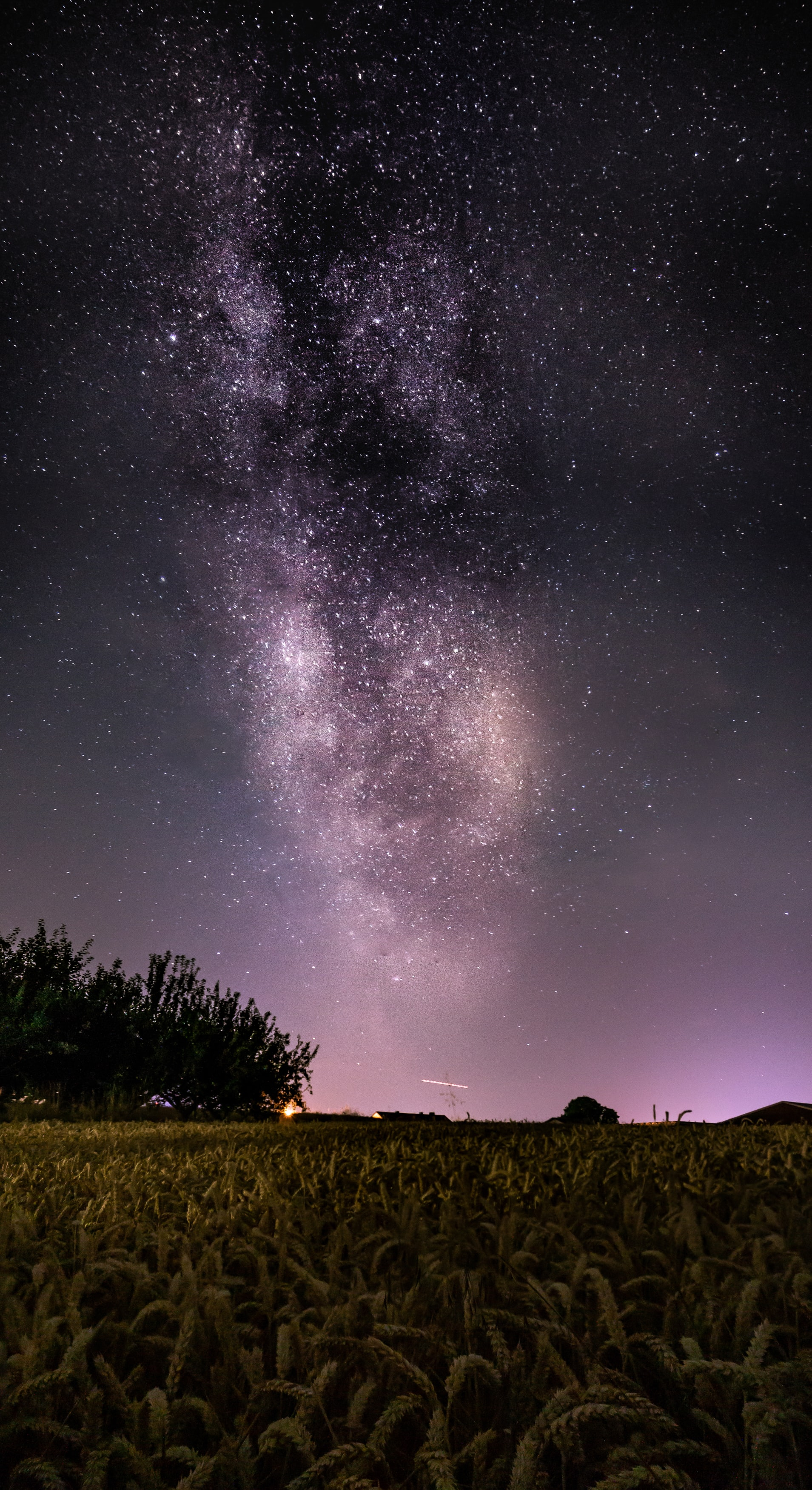 milky way over fields