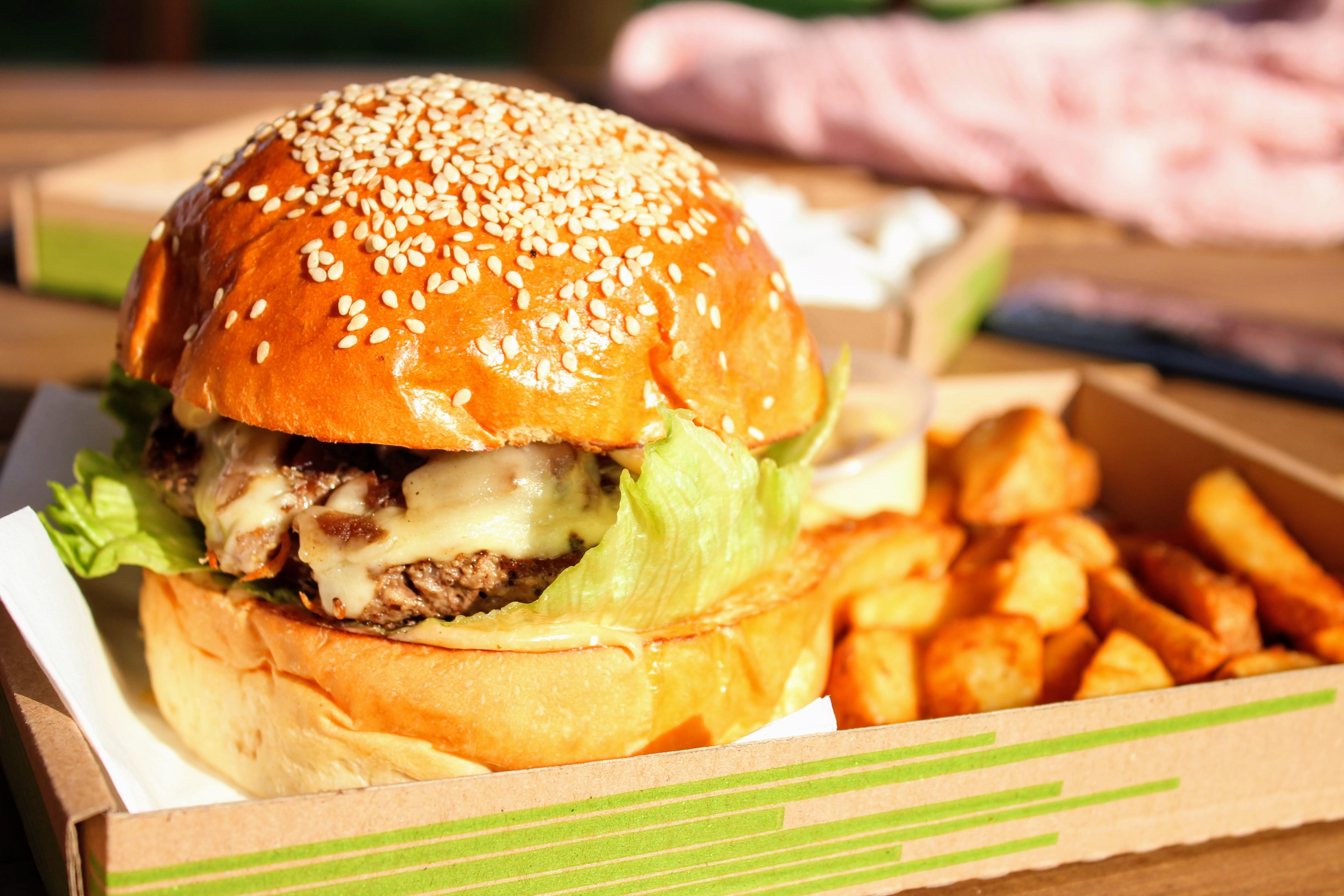 burger and potato fries
