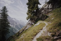 Alps in it's glance