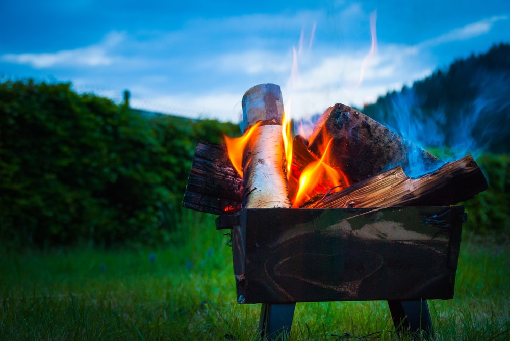 brown firewood with fire