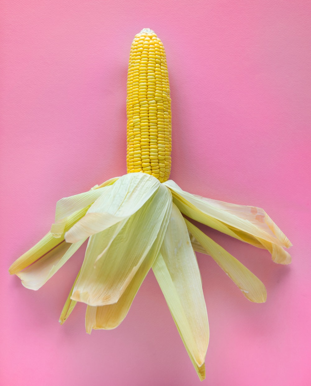 Corn Corn Leaf Yellow Corn And Sweetcorn Hd Photo By Rawpixel