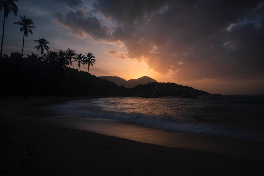 landscape photo of seashore at sunset