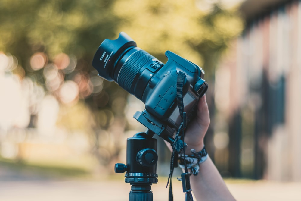 selective focus photography of person holding DSLR camera