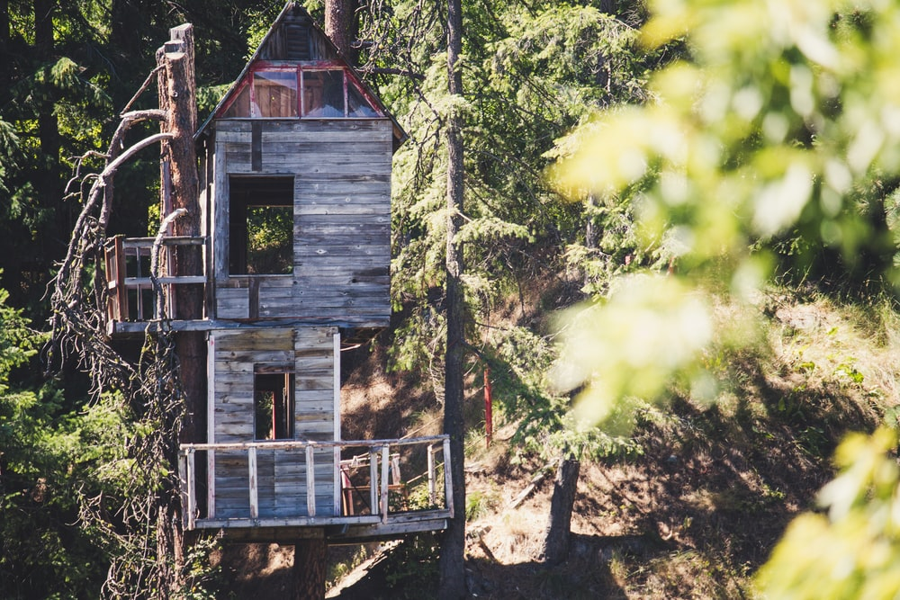brown and gray wooden tree house during daytime