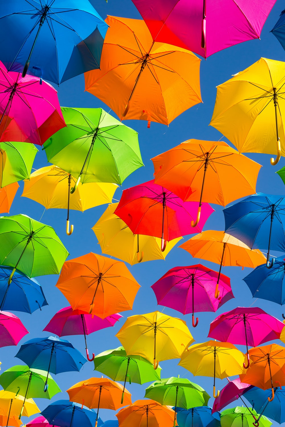 person taking photo of assorted-color umbrellas