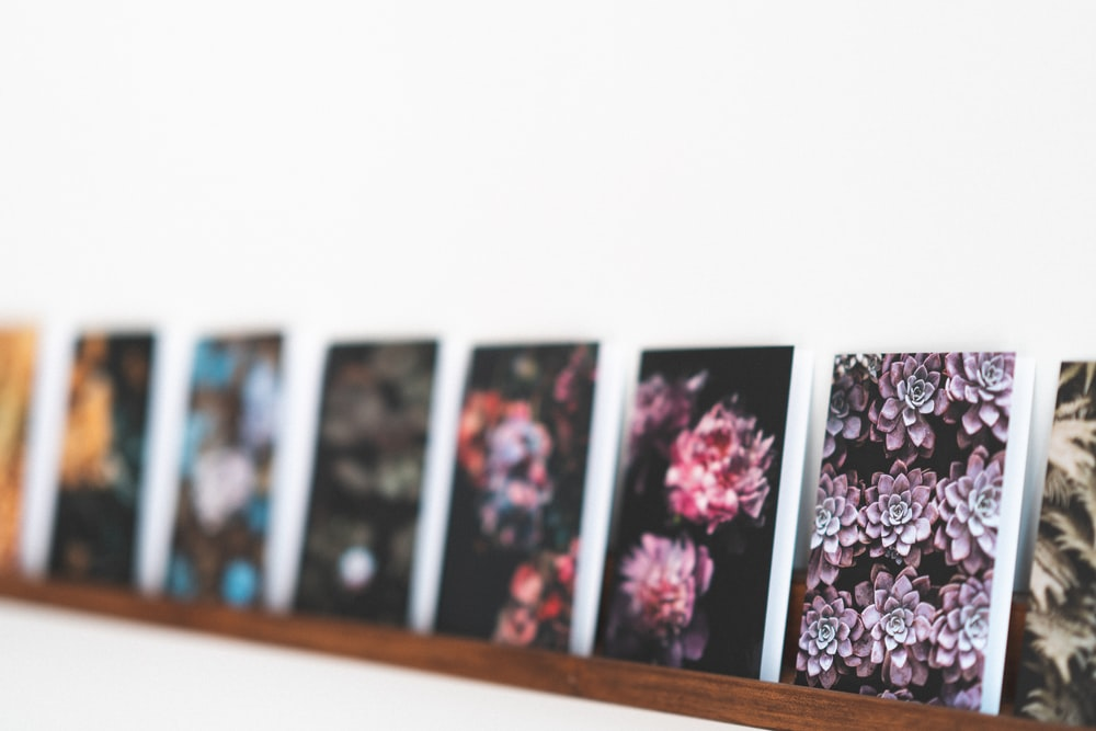 prints pictures hd download free images on unsplash