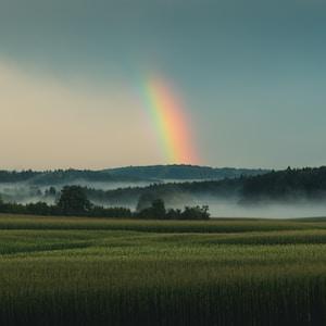 trees under rainbow