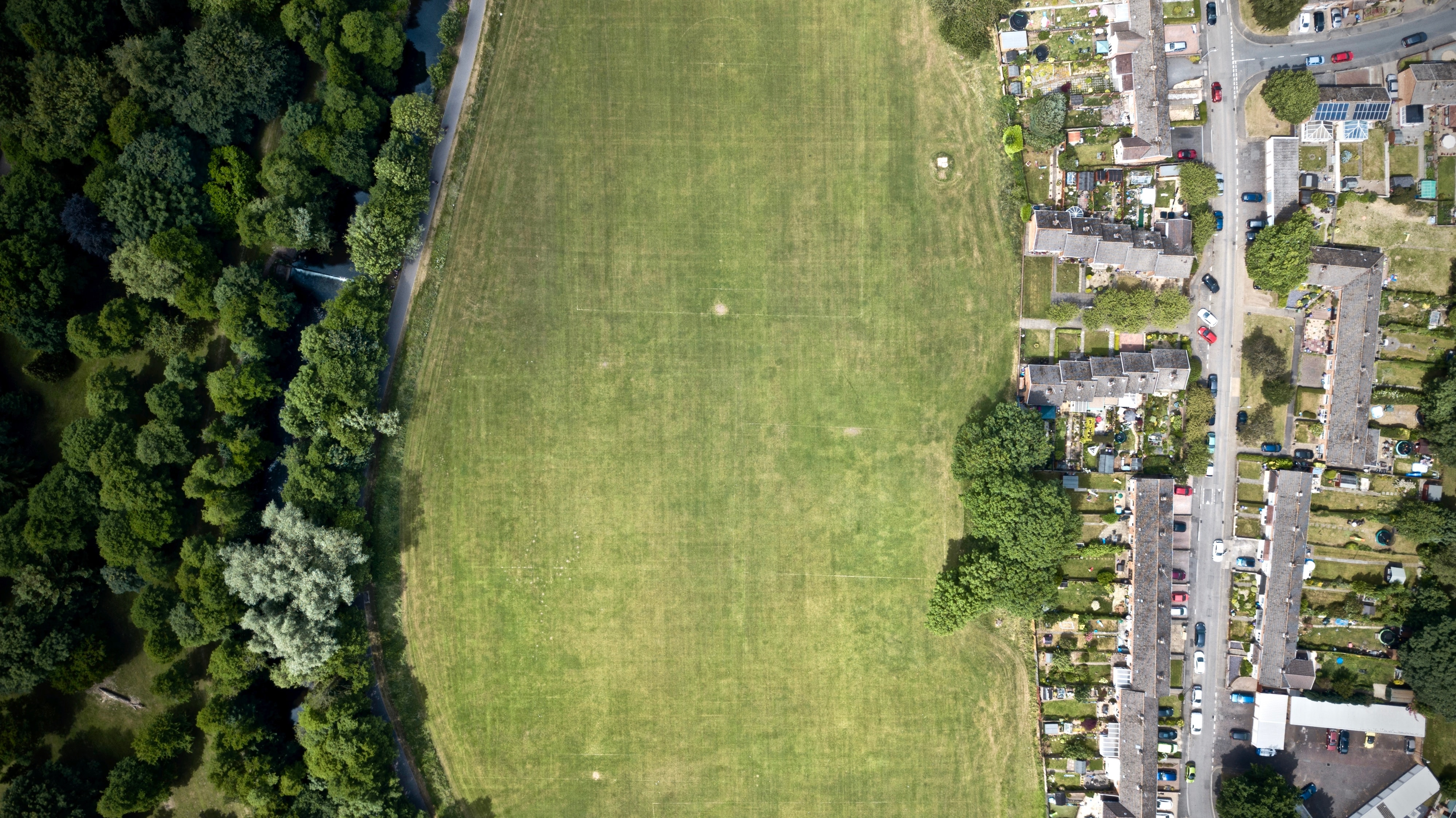 top-view photography of grass field at daytime