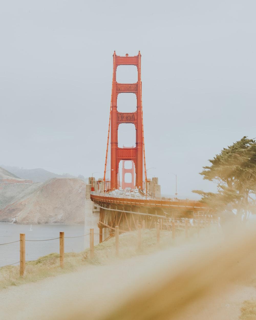 person showing golden gate bridge