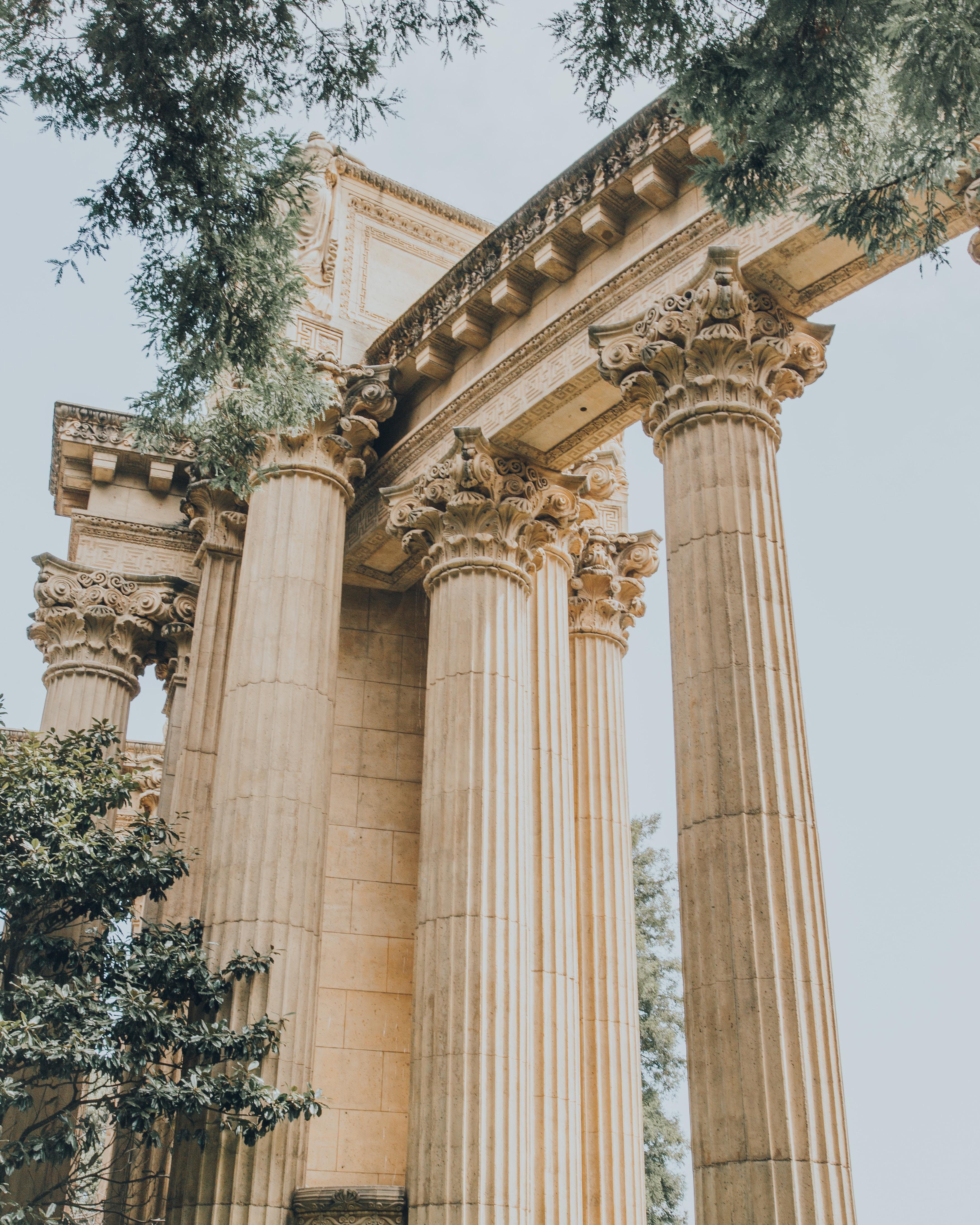 brown columns near trees under clear sky