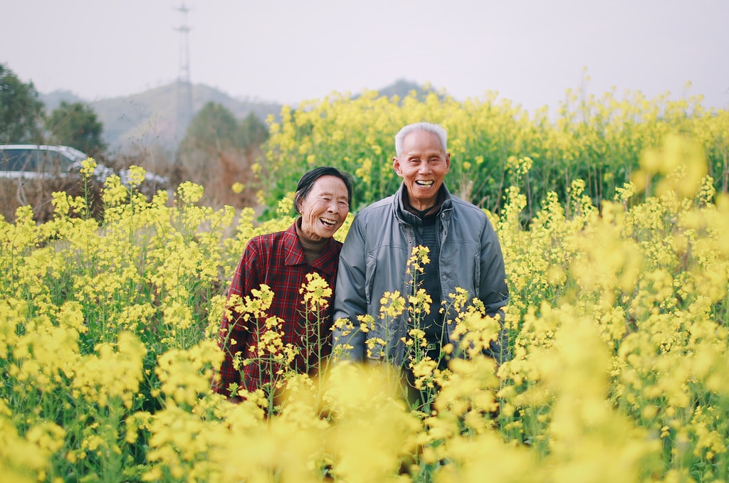 old man and woman standing surrounded by yellow flowers