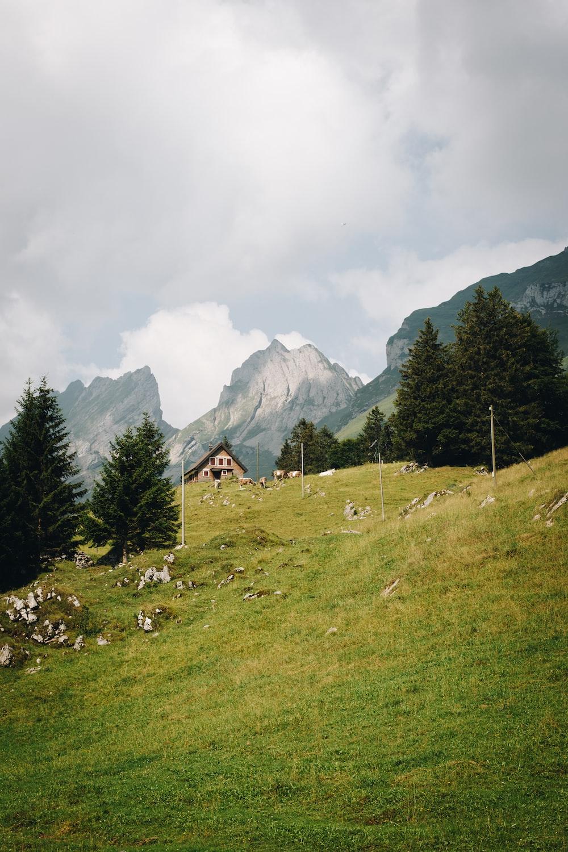 mountain peak during daytime