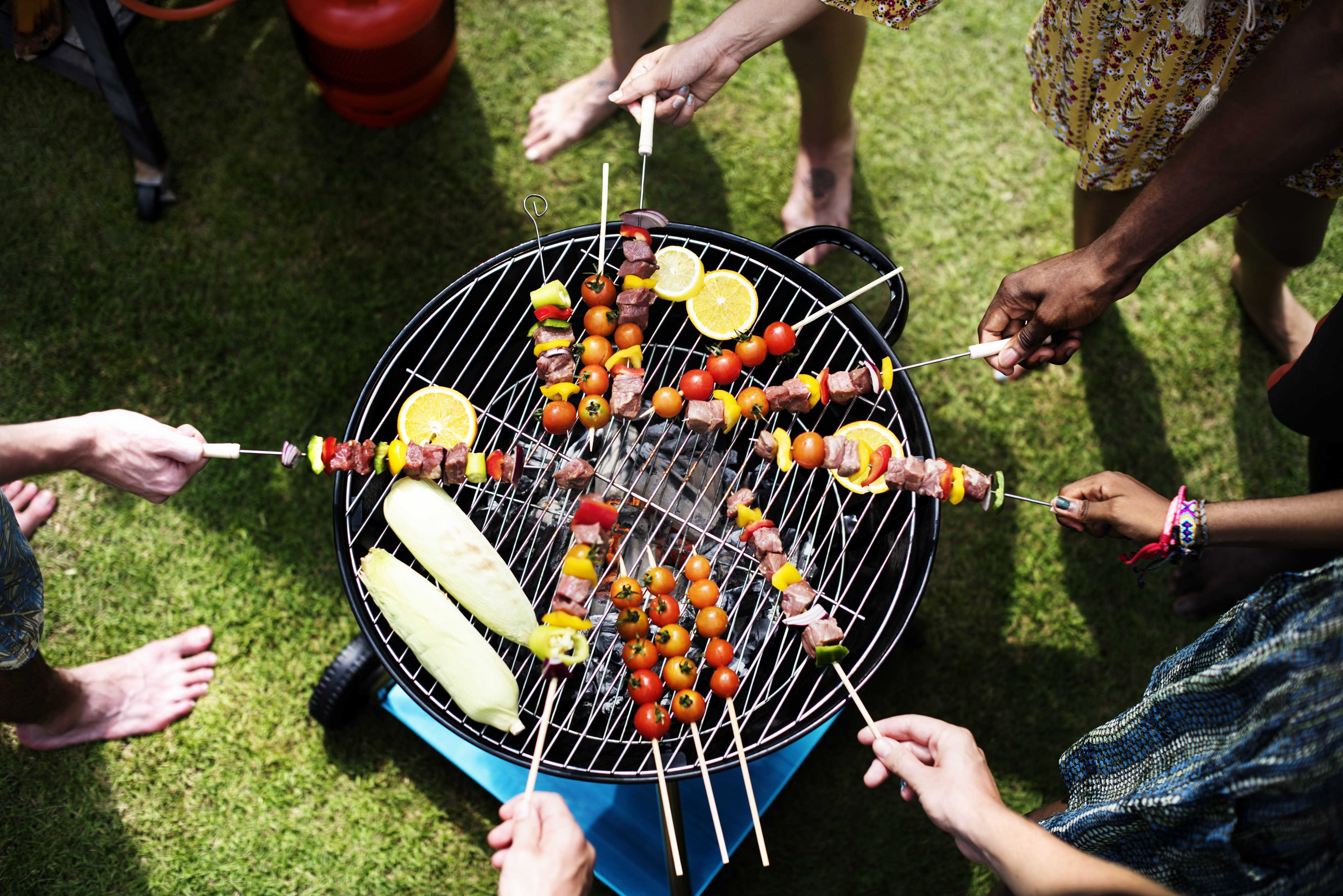 people having a barbecue party
