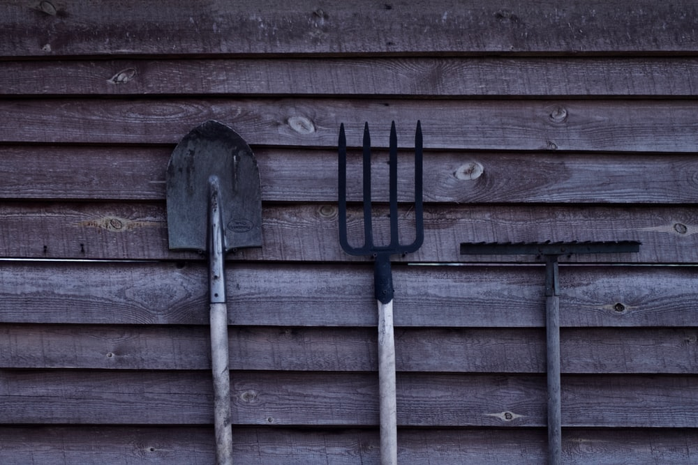 brown shovel and two rakes on brown wooden surface