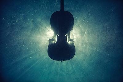 black violin on underwater digital wallpaper violin zoom background