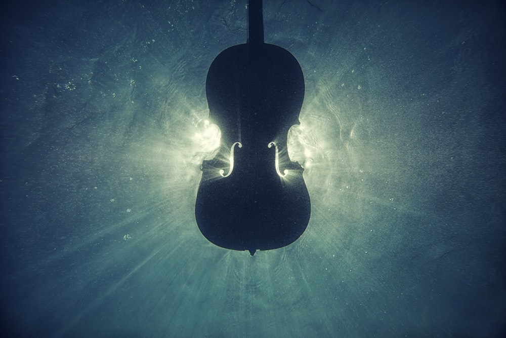 black violin on underwater digital wallpaper