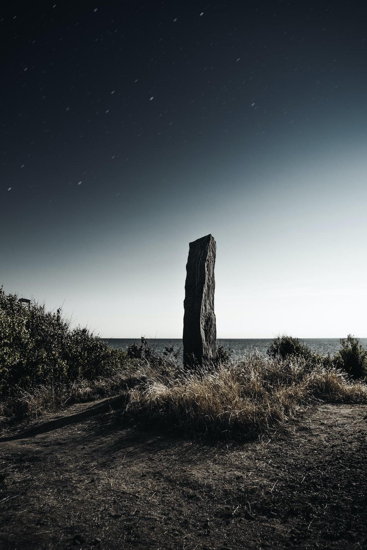 grey stone near brown grass