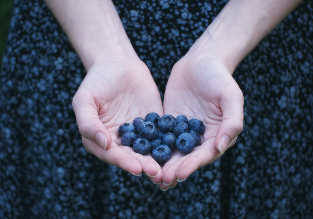 person showing blueberry lot